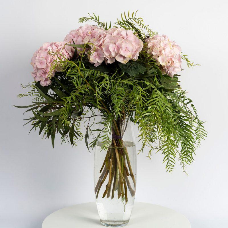 Hortensias rosas - Margarita se llama mi amor
