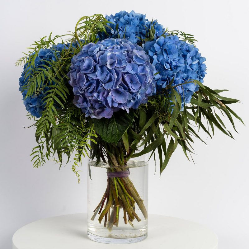 Hortensias azules - Floristería Margarita se llama mi amor